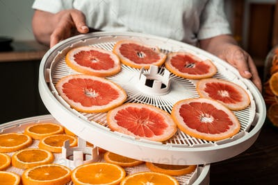 Plastic dehydrator trays with fresh fruits