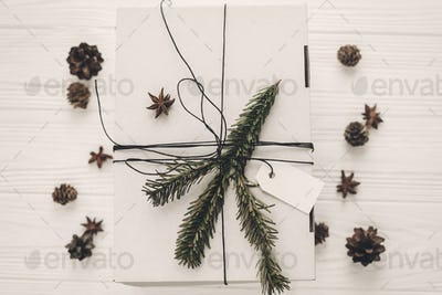 Modern white present with green tree fir branch and pine cones