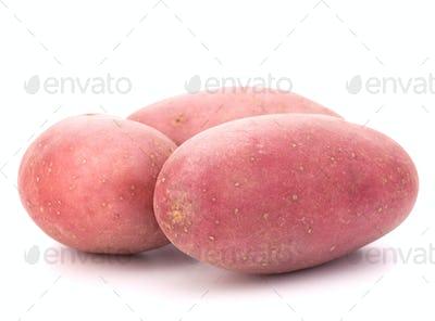 New potato tuber heap