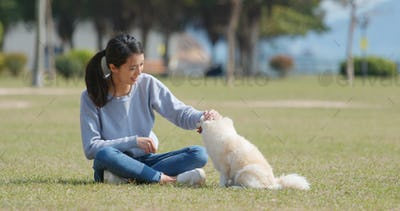Woman play with her dog at outdoor park