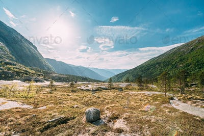 Kinsarvik, Hordaland, Norway. Summer Forest In Hardangervidda Mountain Plateau. Famous Norwegian