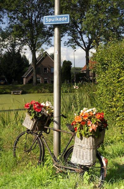 Flower decorated bike
