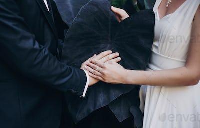 Stylish bride and groom hands on big black leaf in botanical garden