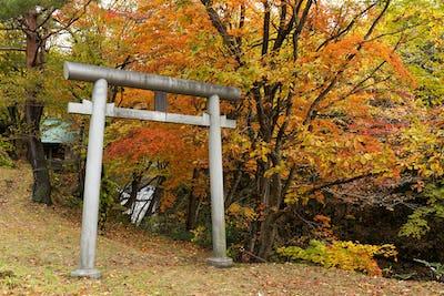 Japanese temple in autumn season