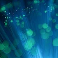 Optical fiber light