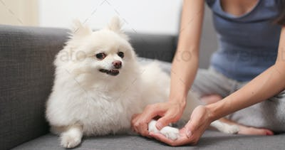 Pet owner checking the hand of her dog