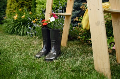 Gardening tools, flowers in rubber boots, nobody
