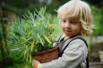 Portrait of small boy with eczema standing outdoors, holding potted plant