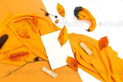 Autumn yellow colours