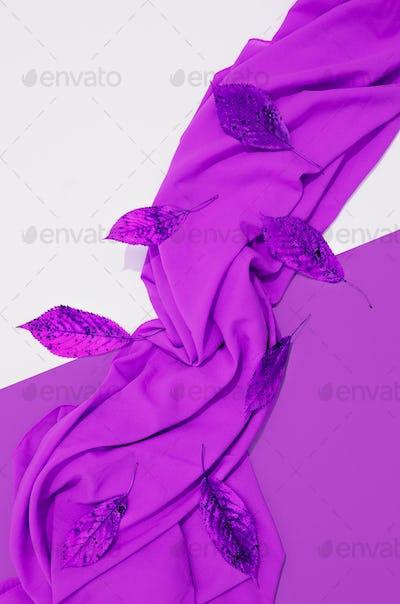 Autumn purple colours