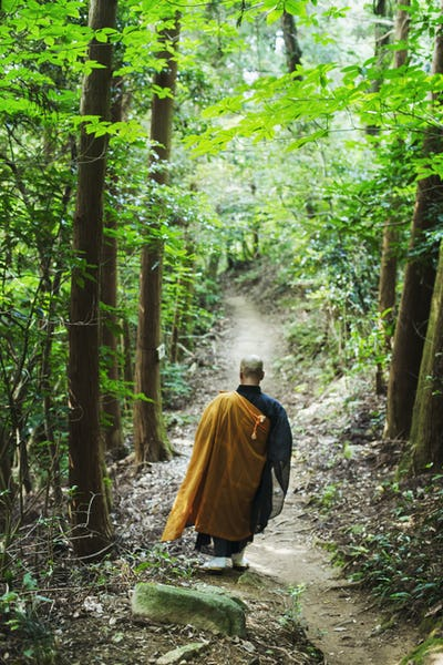 Buddhist monk walking down a forest path