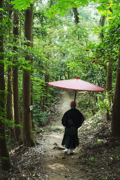 Buddhist monk wearing black robe walking down a forest path