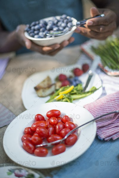 A family picnic meal in the shade