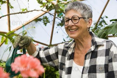 senior woman gardening in geodesic gome