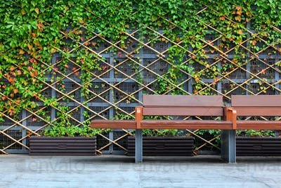 bench in front of green hedge