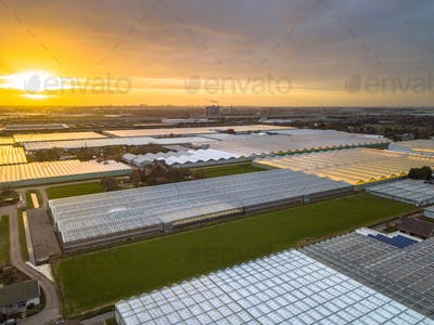 Aerial view of huge Greenhouse horticulture area
