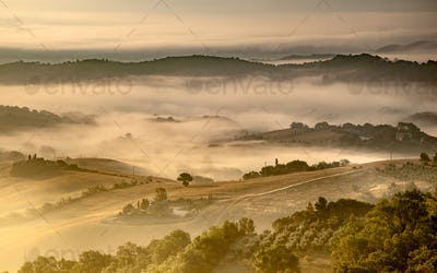 Tuscan Countryside on Foggy Morning