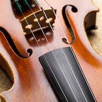 Western musical instrument, violin