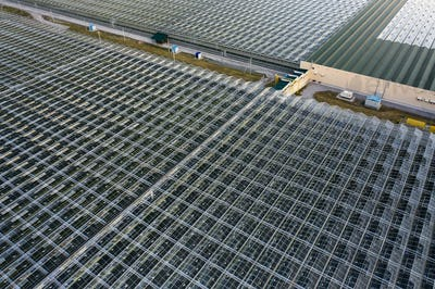 Aerial top view of greenhouse plant