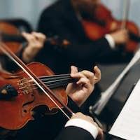Elegant string quartet performing at wedding reception in restaurant