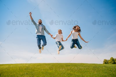 Happy young family with one child holding hands and jumping on meadow
