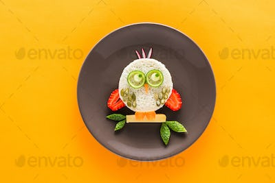 Funny colorful breakfast for child in shape of owl isolated on yellow