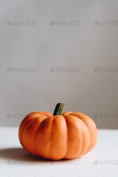 Orange pumpkin on a whtie background. Halloween concept.