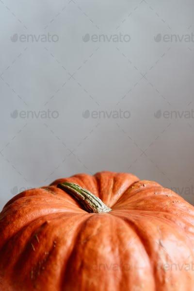 Orange pumpkin on a whtie background. Halloween concept