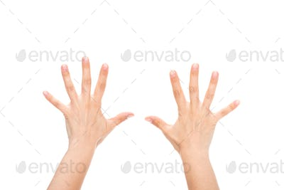 partial view of female hands showing ten fingers isolated on white