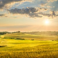 Sunset landscape in Maremma. Rolling hills and cypress trees. Bibbona,Tuscany, Italy
