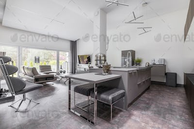 Open space living room and kitchen in glamour family house