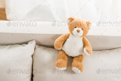 close up view of teddy bear toy on sofa