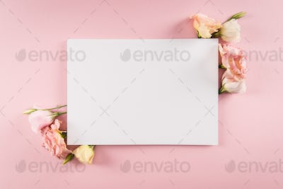 Top view of blank greeting card and tender eustoma flowers isolated on pink