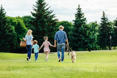 back view of family with two kids holding hands and walking with golden retriever dog in park