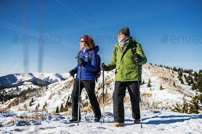 Senior couple with nordic walking poles hiking in snow-covered winter nature