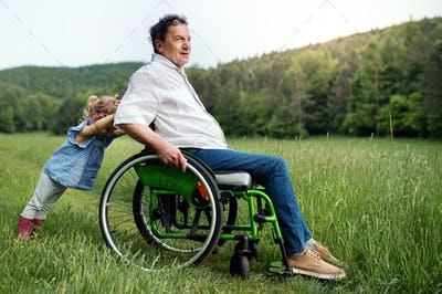 Small girl with senior grandfather in wheelchair on a walk on meadow in nature