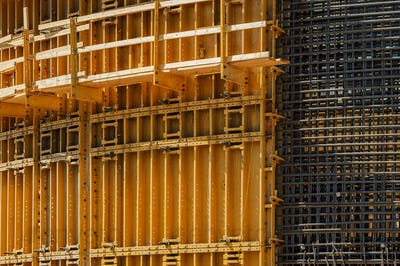 Construction form and rebar