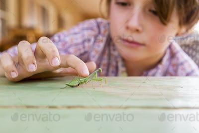 7 year old boy holding a praying mantis