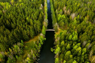 Bird's-eye view of the river and bridge. Forest area with a river in Belarus