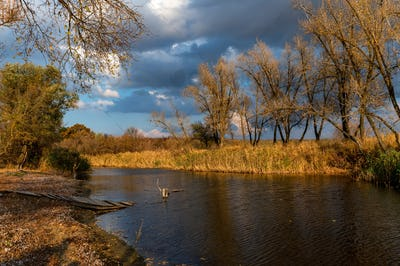 Beautiful nature and autumn landscape with yellow trees on bank of Don river