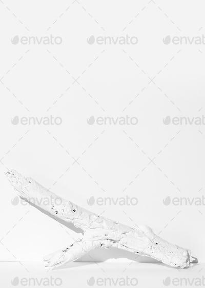 Fashion still life winter scene. White painted brunch. Minimal stylish snow winter cold design