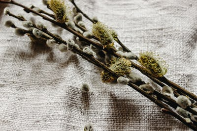 simple wooden easter eggs and willow buds and wax sticks on rustic napkin with embroidery