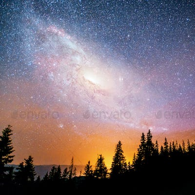 Fantastic starry sky and the milky way above the pinnacles of the pines. Courtesy of NASA