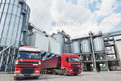 Agricultural Silo - Building Exterior, Storage and drying of grains, wheat, corn, soy