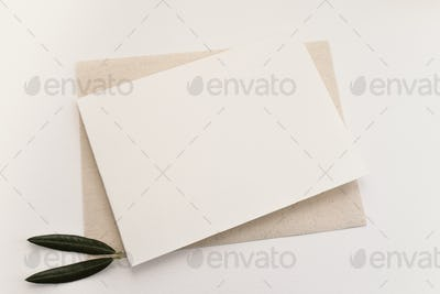 Blank paper and olive leaves