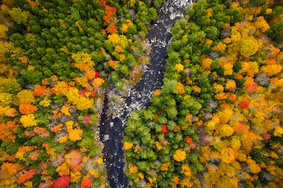 Aerial view of Winding River Through Autumn Trees with Fall Colors in New England