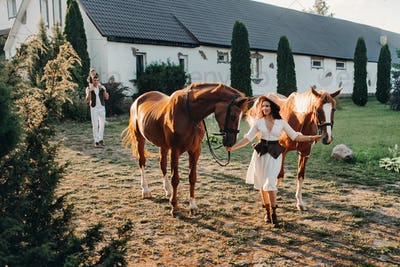 A family in white clothes with their son walking with two beautiful horses in nature. A stylish