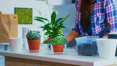 Preparing flowers for replanting