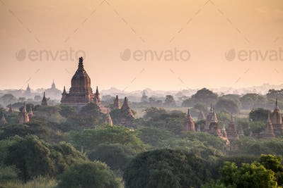 Pagodas in landscape