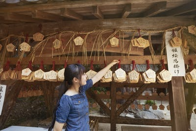 Young woman looking at wooden fortune telling plaques at shrine.